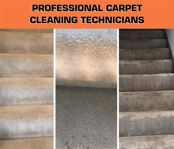 "graphic with text saying ""professional carpet cleaning technicians"" and a photo of carpets with before and after"