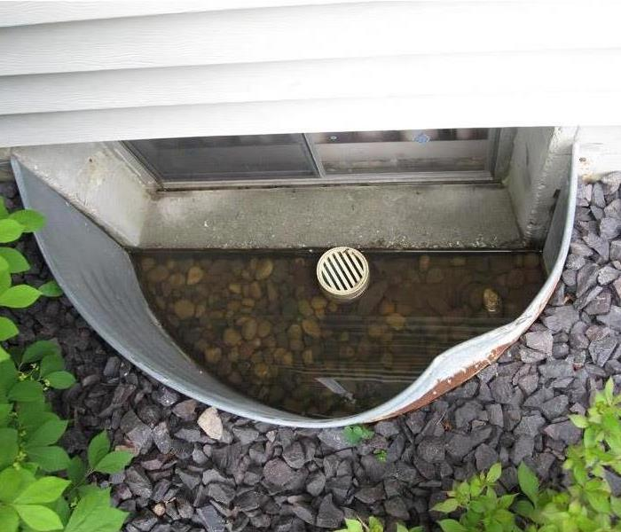 image of window well containing sitting water that can cause water damage to a basement