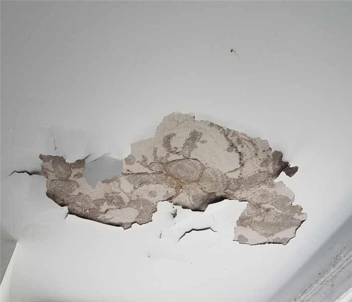 Picture shows a large portion of an indoor celing that has been affected by water damage.