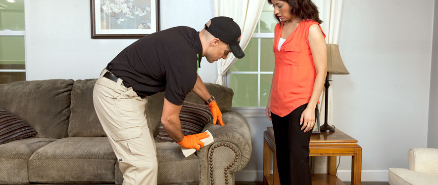 Youngstown, OH carpet upholstery cleaning